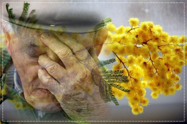 Скоро праздники! Присоединяйтесь к программе «Подарите радость старикам»